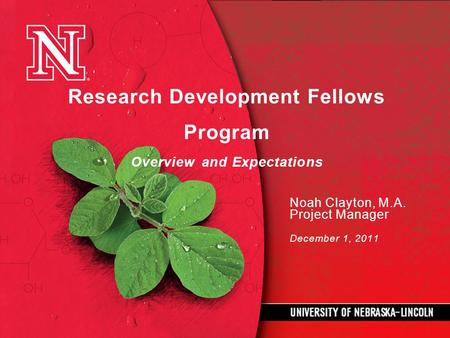 Research Development Fellows Program Overview and Expectations Noah Clayton, M.A. Project Manager December 1, 2011.