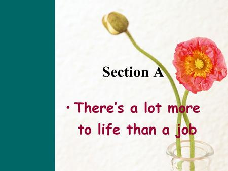 Section A There's a lot more to life than a job so; for the reason unbelievable give company a job; employment confuse meeting  accordingly  incredible.