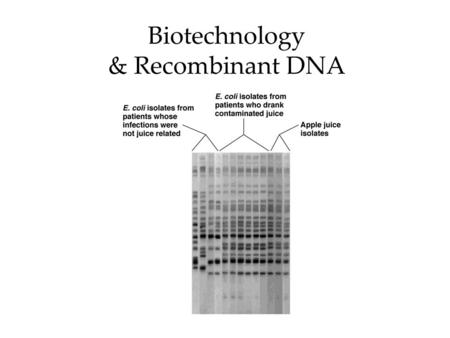 Biotechnology & Recombinant DNA. What is biotechnology?  Using living microorganisms or cell components to make products Often via genetic engineering.