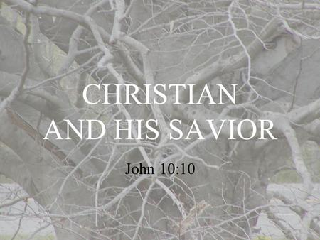 "CHRISTIAN AND HIS SAVIOR John 10:10. Receiving Jesus Brings Life Before receiving Jesus the believer is spiritually dead. ""…he who does not believe the."