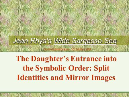 Jean Rhys's Wide Sargasso Sea The Daughter's Entrance into the Symbolic Order: Split Identities and Mirror Images Norton Critical Ediction. NY: Norton,