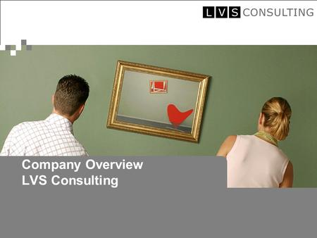 © 2005 by LVS Consulting Company Overview LVS Consulting.