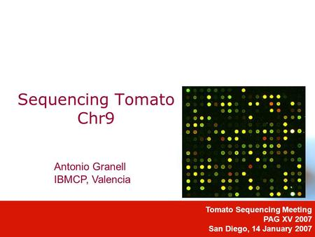 Sequencing Tomato Chr9 Tomato Sequencing Meeting PAG XV 2007 San Diego, 14 January 2007 Antonio Granell IBMCP, Valencia.