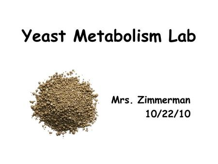 Yeast Metabolism Lab Mrs. Zimmerman 10/22/10. Photosynthesis 6 CO 2 + 6 H 2 O  C 6 H 12 O 6 + 6 O 2 Energy from sunlight.