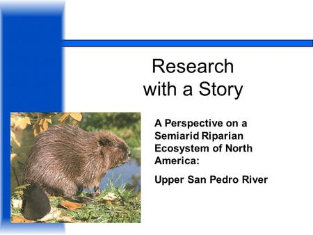 Research with a Story A Perspective on a Semiarid Riparian Ecosystem of North America: Upper San Pedro River.