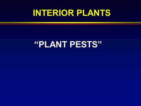 """PLANT PESTS"" INTERIOR PLANTS. PREVENTION F Monitor Regularly F Sanitation F Supplier F Quarantine F Alter Conditions."