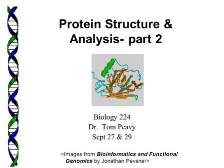 Biology 224 Dr. Tom Peavy Sept 27 & 29  Protein Structure & Analysis- part 2.