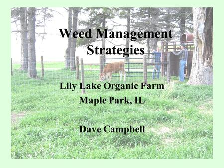 Weed Management Strategies Lily Lake Organic Farm Maple Park, IL Dave Campbell.