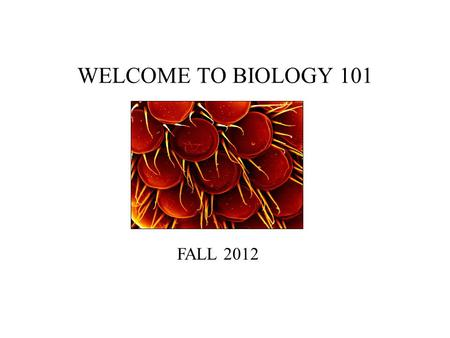 WELCOME TO BIOLOGY 101 FALL 2012. BIOLOGY 101 Introductions: My Background Contact Information: –Reagan Lake –Rm 454 (BS Bldg) –