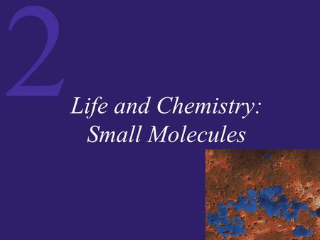 Life and Chemistry: Small Molecules