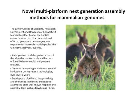 Novel multi-platform next generation assembly methods for mammalian genomes The Baylor College of Medicine, Australian Government and University of Connecticut.
