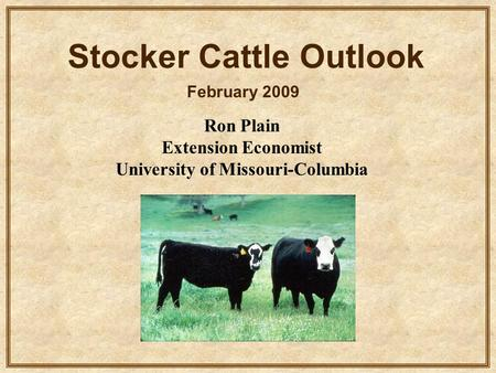 Ron Plain Extension Economist University of Missouri-Columbia Stocker Cattle Outlook February 2009.