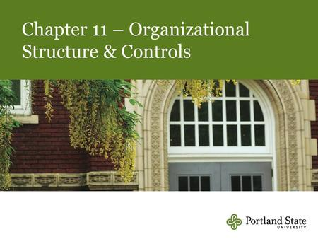 Chapter 11 – Organizational Structure & Controls