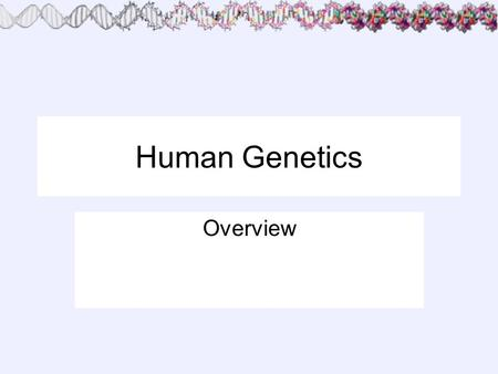 Human Genetics Overview.