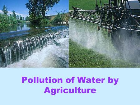 Pollution of Water by Agriculture Vicki Chapman Vanina Guevel Anne Newson Tony.