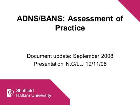 ADNS/BANS: Assessment of Practice Document update: September 2008 Presentation N.C/L.J 19/11/08.