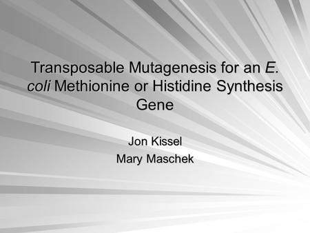 Transposable Mutagenesis for an E. coli Methionine or Histidine Synthesis Gene Jon Kissel Mary Maschek.