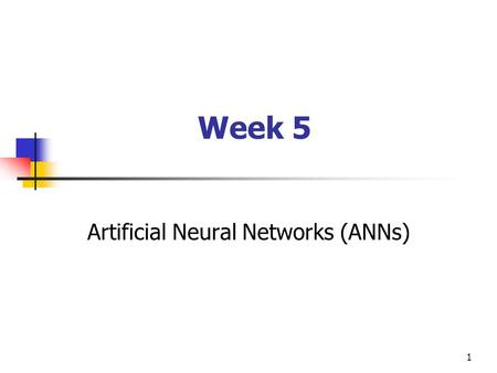 Artificial Neural Networks (ANNs)