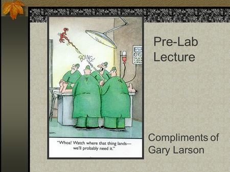 Compliments of Gary Larson Pre-Lab Lecture. Blood Vessels and Circulation Chapter 13.