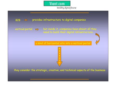 Viant.com provides infrastructure to digital companies but inside it, companies have almost all they need to build their digital infrastructure. B2B vertical.