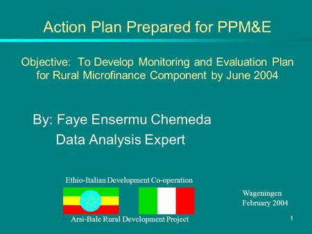 1 Action Plan Prepared for PPM&E Objective: To Develop Monitoring and Evaluation Plan for Rural Microfinance Component by June 2004 By: Faye Ensermu Chemeda.