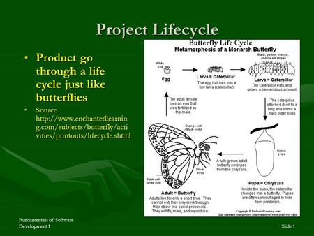 Fundamentals of Software Development 1Slide 1 Project Lifecycle Product go through a life cycle just like butterfliesProduct go through a life cycle just.