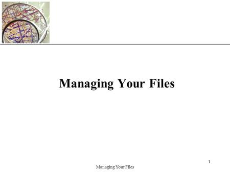 XP Managing Your Files 1. XP Managing Your Files 2 Objectives Develop file management strategies Explore files and folders Create, name, copy, move, and.