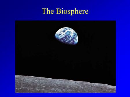 The Biosphere. Ecology Ecologists study of interactions of organisms with their environment Levels of Interaction –Organism –Population –Community –Ecosystem.