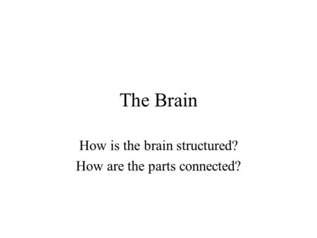 The Brain How is the brain structured? How are the parts connected?