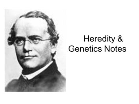Heredity & Genetics Notes. Who is Gregor Mendel? He is the founder of modern genetics. He used garden pea plants to study the way traits are passed from.