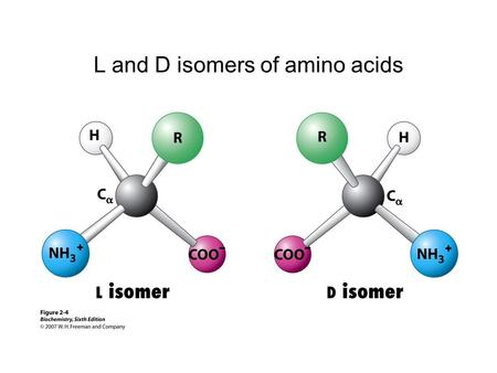 L and D isomers of amino acids. Ionization state as a function of pH.