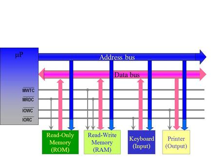 P Address bus Data bus Read-Only Memory (ROM) Read-Write Memory (RAM)