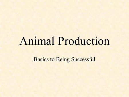 Animal Production Basics to Being Successful. What's The Purpose? What are you producing your animals for? –Example: Sheep –Wool –Meat Cattle –Dairy –Meat.