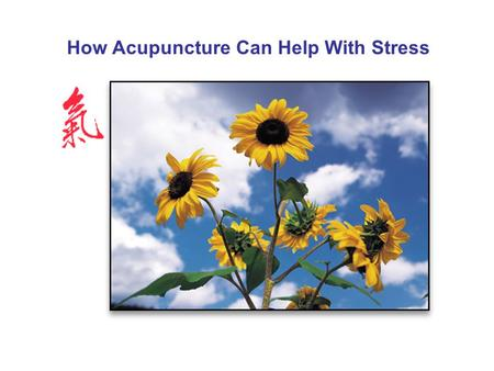 How Acupuncture Can Help With Stress. How Much Stress Do You Have? 62% of Americans say work has a significant impact on stress levels. 73% of Americans.
