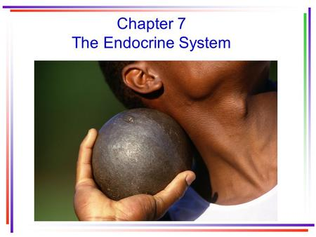 Chapter 7 The Endocrine System. Two systems that coordinate physiological functions of humans 1.The nervous system 2.The endocrine system.