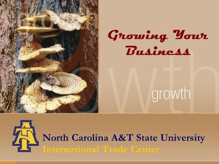 North Carolina A&T State University International Trade Center Growing Your Business.