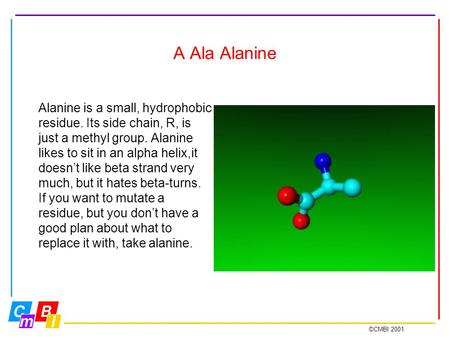 ©CMBI 2001 A Ala Alanine Alanine is a small, hydrophobic residue. Its side chain, R, is just a methyl group. Alanine likes to sit in an alpha helix,it.