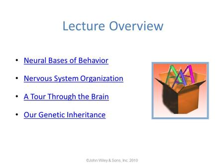 Lecture Overview Neural Bases of Behavior Nervous System Organization