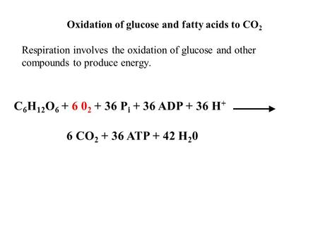 Oxidation of glucose and fatty acids to CO 2 Respiration involves the oxidation of glucose and other compounds to produce energy. C 6 H 12 O 6 + 6 0 2.