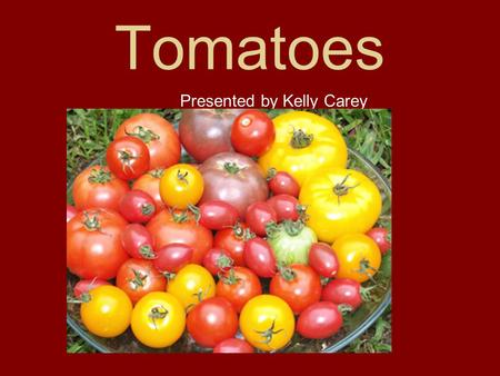 Tomatoes Presented by Kelly Carey.