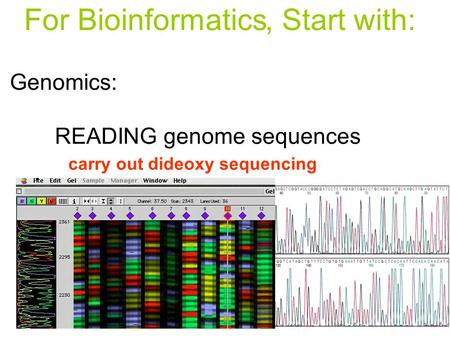 Genomics: READING genome sequences ASSEMBLY of the sequence ANNOTATION of the sequence carry out dideoxy sequencing connect seqs. to make whole chromosomes.