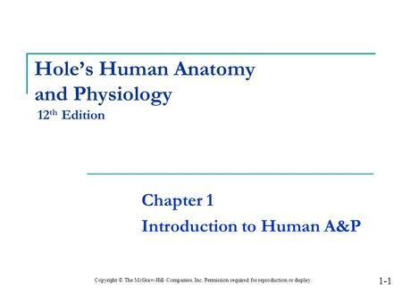1 Hole\'s Human Anatomy and Physiology Twelfth Edition Shier ...