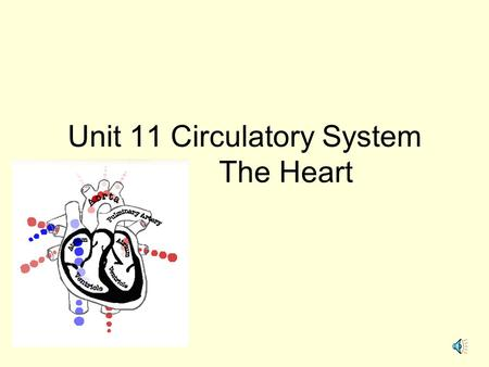 Unit 11 Circulatory System The Heart