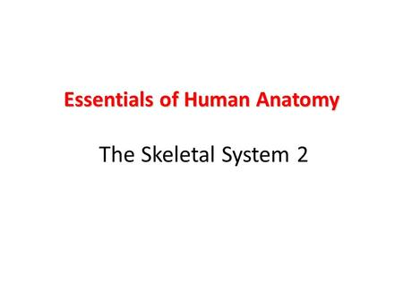 Essentials of Human Anatomy The Skeletal System 2
