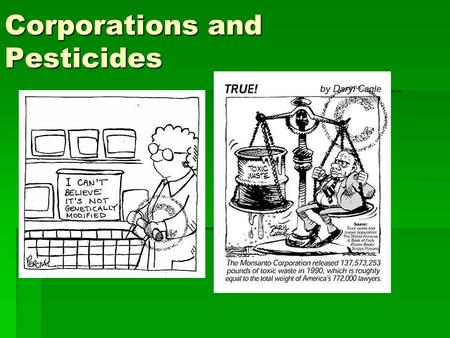 Corporations and Pesticides. Multinational Corporations have Control  1960s and 1970s the pesticide market was a highly profitable business venture,