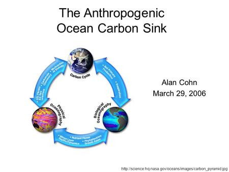The Anthropogenic Ocean Carbon Sink Alan Cohn March 29, 2006