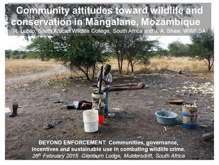 Community attitudes toward wildlife and conservation in Mangalane, Mozambique R. Lubilo, South African Wildlife College, South Africa and J. A. Shaw, WWF.