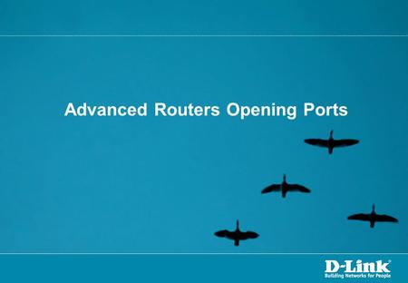 Advanced Routers Opening Ports