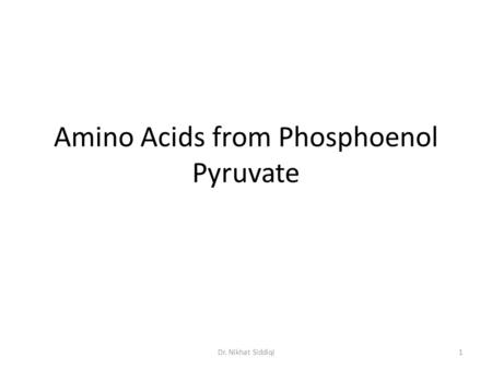 Amino Acids from Phosphoenol Pyruvate 1Dr. Nikhat Siddiqi.