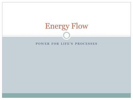 POWER FOR LIFE'S PROCESSES Energy Flow. Producers Sunlight is the primary source of energy source for life on earth. Plants, algae, and some bacteria.
